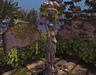 CJ Secret Garden Statue with Hydrangea ~ c + m ~