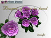 Bouquet of roses in hand, purple_K006_5