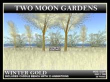 TMG - WINTER GOLD - LOW PRIM Small Winter landscaped garden