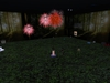 Firework shooter 004