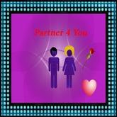 Partner-4-You HUD v5
