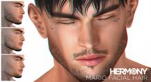 HERMONY / MARIO FACIAL HAIR / CATWA APPLIER