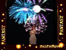 Fireworks To Wear