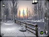 Enchanted Winter Path with Lanterns