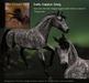 Teegle Texture Pack - Dark Dapple Grey  - Texture Barn