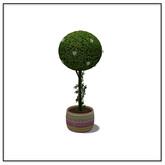 Spring Tree - Belle Belle Furniture