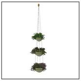 Hanging Plants - Belle Belle Furniture