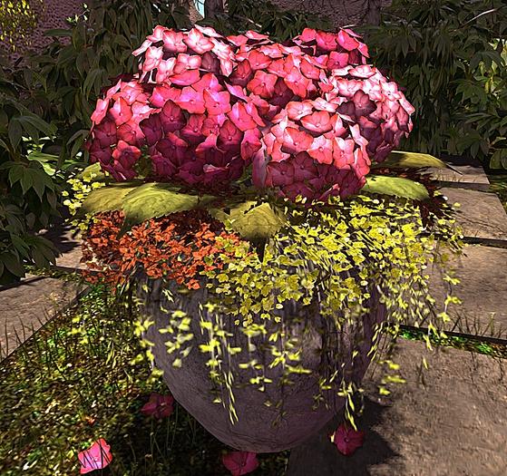 CJ Secret Garden Hydrangea Planter 02