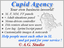 A.G. Cupid Agency 3.0