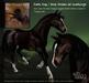 Teegle Texture Pack - Dark Seal Bay  - Texture Barn