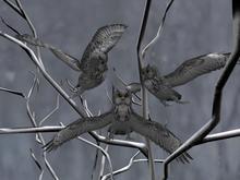 Follower owl gray box (WEAR)
