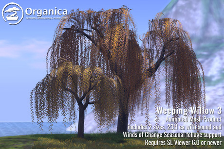 [ Organica ] Weeping Willow 3