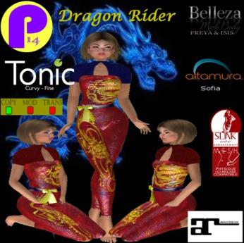 P14-Dragon Rider (Boxed)