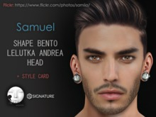 Samia - Lelutka Andrea Head - Samuel Shape