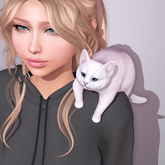 Sweet Thing. Cabootie Cat - Shoulder Bud (Static posed kitty laying on your shoulder - 12 fur colors - optional booties)