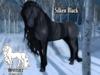 Impostable-TH:Silken Black Coat