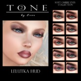 TONE 2 - Soft Ombre Eye Collection