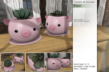 Sway's [Piggy] Flowerpot with Succulent
