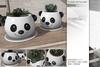 Sway's [Panda] Flowerpot with Succulent