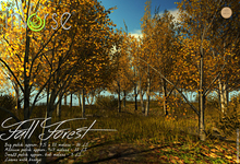 inVerse® MESH - Fall Forest patch