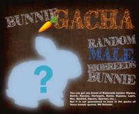 BB Bunny Box 2