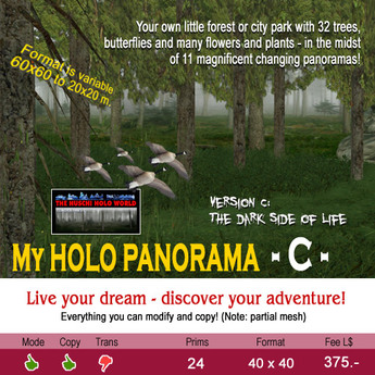 My Holo Panorama -C-  copy/mode