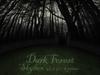 !SALE! Dark Forest Skydome