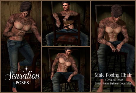 Sensation Poses Chair Posing Prop 10 male poses
