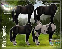 Black for Jinx Centaur