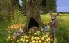 Cj spring fawn set 01