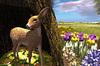 Cj spring fawn set 03