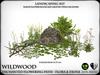 Heart   wildwood enchanted flowering path with lanterns   ref11