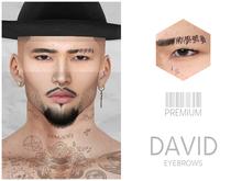 Premium - David - Eyebrows