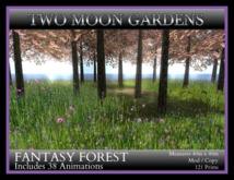 TMG - FANTASY FOREST*