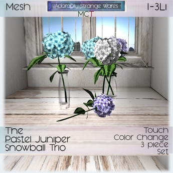 ~ASW~ The Pastel Juniper Snowball Trio