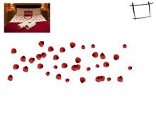 Full Perm Mesh Spreaded Mesh Rose Petals