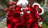 Cj valentine rose bouquet   fur heart 02