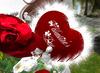 Cj valentine rose bouquet   fur heart 03