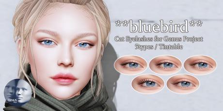 **bluebird** Cat Eyelashes for Genus Project