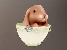 Fawny ♥ Cute bunny in teacup ♥ 04