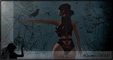 :LW: Bento Poses - The Raven