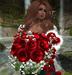 CJ Rose Bouquet Red + Fur Heart - I love you