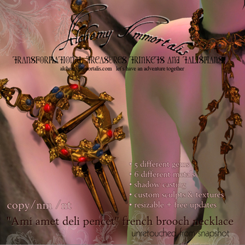 Ami amet deli pencet French Brooch Necklace ($575 on sale for $175! / changeable gems & metals)