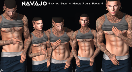 Navajo - Bento Static Pose Pack 9