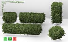 [MF] Mesh hedge bushes FAT PACK BUILD KIT (boxed)