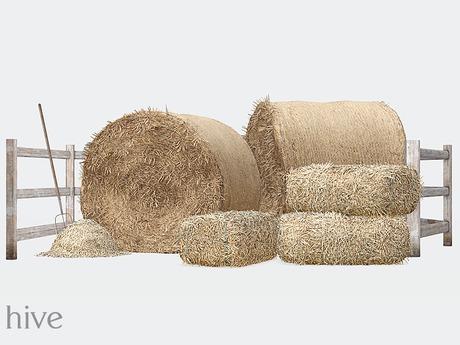 hive // harvest hay set [wear to unpack]
