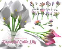 [ FULL PERM ] Beautiful Calla Lily