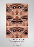 The Face ~ Catwa/Genus - Catchy ~ Eyes palette