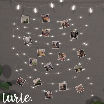 tarte. string light photos
