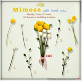 ASO! Mimosa 6